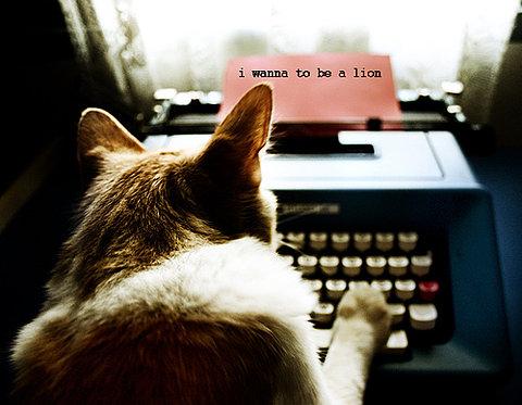 cachorro escrevendo numa maquina de escrever