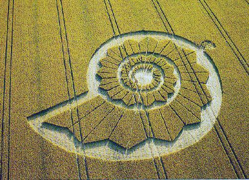 medwaycropcircle-co-uk_newgrange-spirals-jt4.jpg