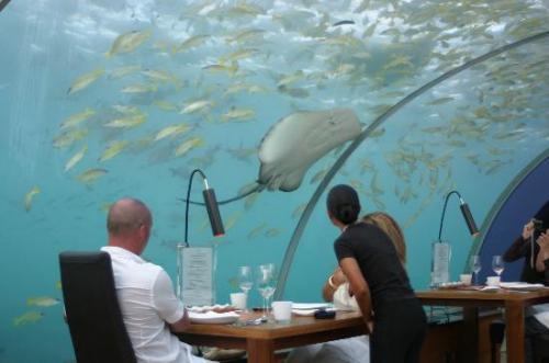 Restaurante embaixo dagua