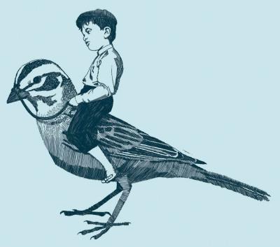 menino sentado sobre passarinho pousado
