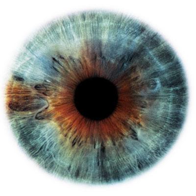 pupila azul e caramelo