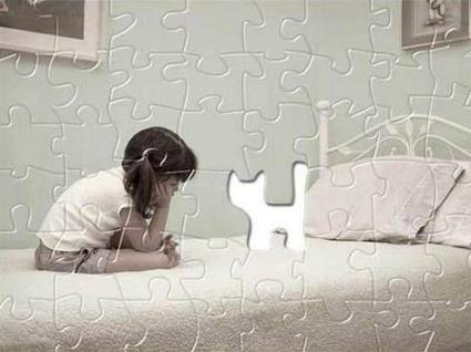 planetdannet_pics_misc_puzzle_kitty