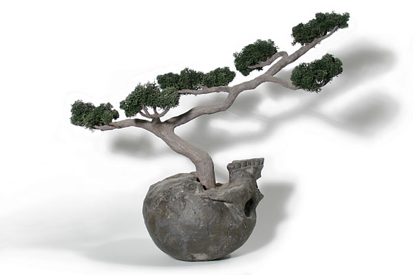 jasonclaylewis.com-devour-images-bonsai.jpg