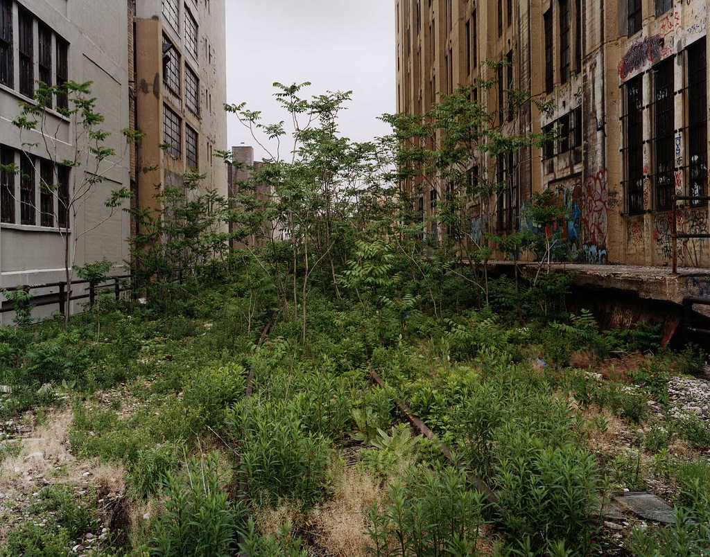 thehighline.org_galleries_images_joel-sternfeld_3249173664_88603e181b_b