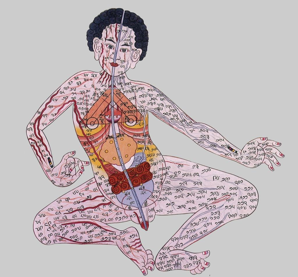 assemblyman-eph.blogspot.com_2009_07_tibetan-anatomy-paintings.html_3750430764_21e7d7d932_o