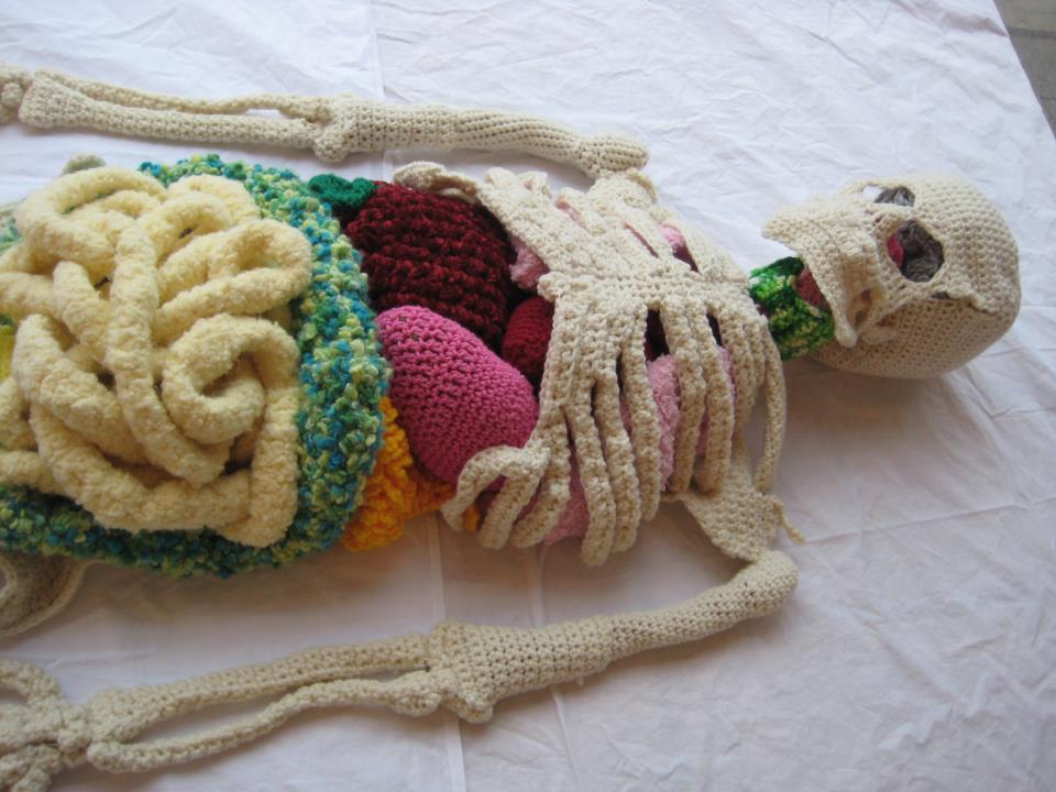escultura de esqueleto realista feito com linhas, tricô crochê, com os órgãos internos expostos e coloridos