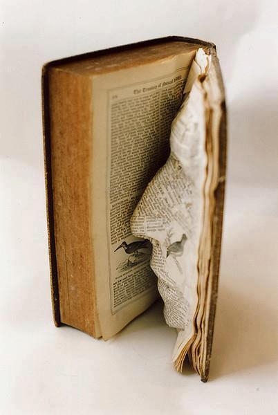Livro aberto com rosto de perfil moldado em uma das páginas