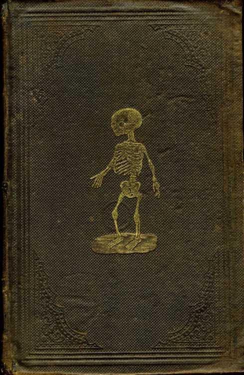 Capa de um livro antigo com uma caveirinha de criança de pé desenhada sobre o couro marrom