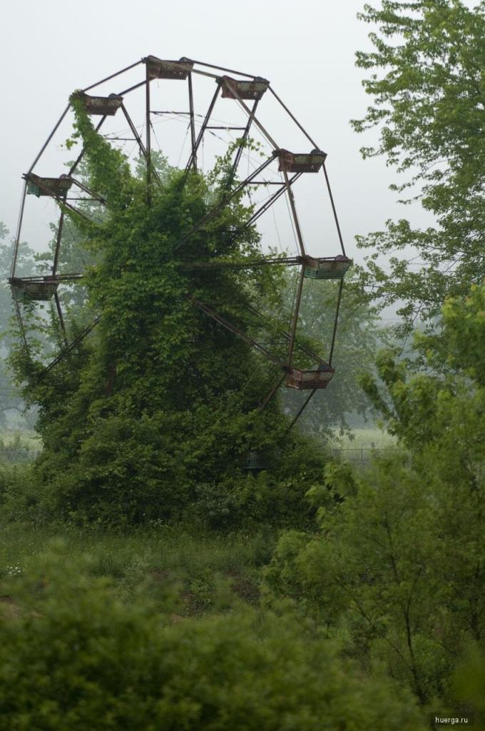Roda gigante abandonada e tomada pela vegetação